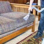 ¿Cómo limpiar el pelo de las mascotas de sofás y alfombras?